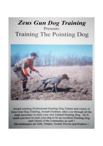 ZEUS GUN DOG TRAINING  ---  Training The Pointing Dog
