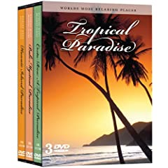 Tropical Paradise (3pc) (Ws)