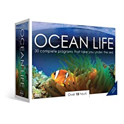 Ocean Life
