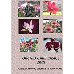 Orchid Care Basics