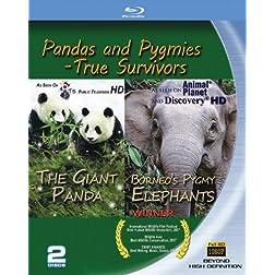 Borneo's Pygmy Elephants/Giant Panda 2-pack [Blu-ray]