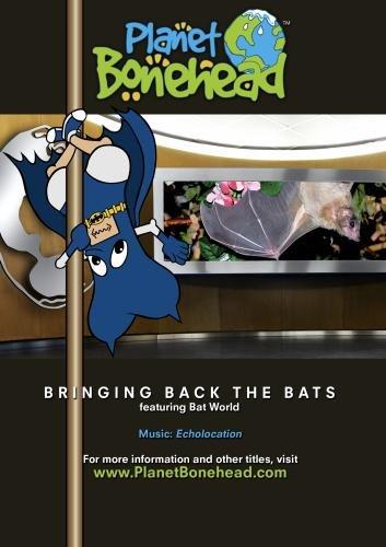Bringing Back the Bats
