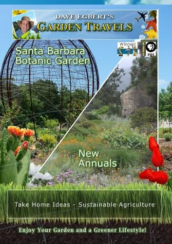Garden Travels Santa Barbara Botanic Garden New Annuals