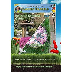 Garden Travels Bellevue Botanical Garden Hellebores