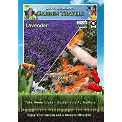 Garden Travels Lavender/Koi