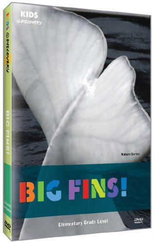 Kids @ Discovery: Big Fins!
