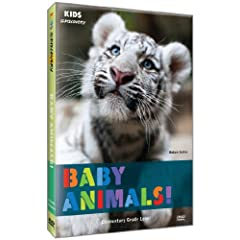 Kids @ Discovery: Baby Animals!