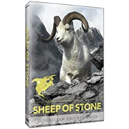 Sheep of Stone