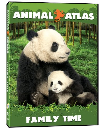 Animal Atlas: Family Time