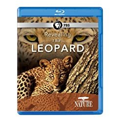 Nature: Revealing the Leopard [Blu-ray]
