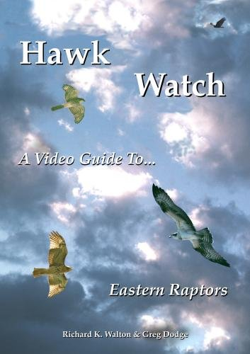 Hawk Watch: A Video Guide to Eastern Raptors