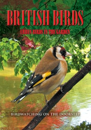 British Birds: Urban Birds in the Garden
