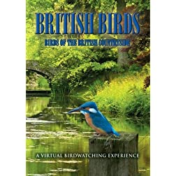 British Birds: Birds of the British Countryside