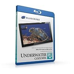 BluScenes: Underwater Cozumel 1080p HD Blu-ray Disc