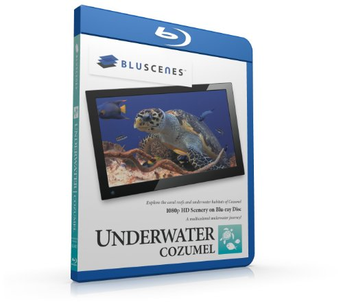 BluScenes: Underwater Cozumel 1080p HD Blu-ray Disc