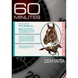 60 Minutes - Zenyatta (October 31, 2010)