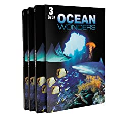 Ocean Wonders