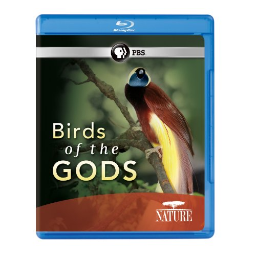 Nature: Birds of the Gods [Blu-ray]
