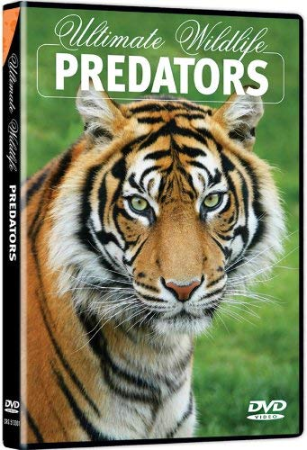 Ultimate Wildlife: Predators