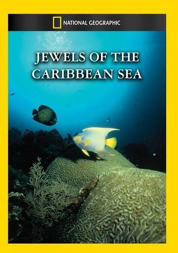 Jewels of the Caribbean Sea