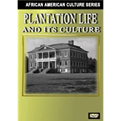 Plantation Systems in the South (Black History)