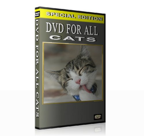 DVD for all Cats (When you are not at home)