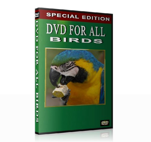 DVD for all Birds (When you are not at home)