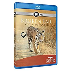 Nature: Broken Tail: A Tiger's Last Journey [Blu-ray]