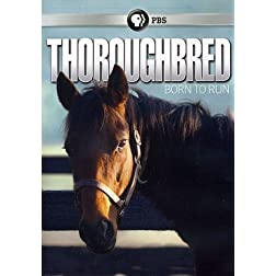 Thoroughbred: Born to Run