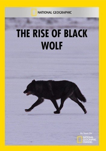 The Rise of Black Wolf