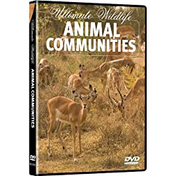 Ultimate Wildlife: Animal Communities