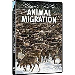 Ultimate Wildlife: Animal Migration