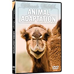 Ultimate Wildlife: Animal Adaptation