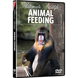 Ultimate Wildlife: Animal Feeding