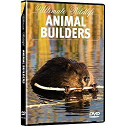Ultimate Wildlife: Animal Builders