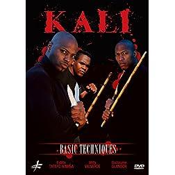 Kali: Basic Techniques