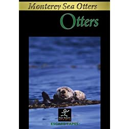 Otters: Monterey Bay Relaxing Nature Video/Nature Sounds
