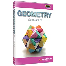 Teaching Systems Geometry Module 3: Triangles