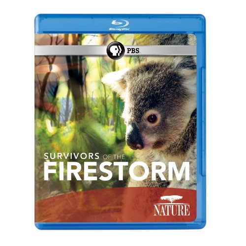 Nature: Survivors of the Firestorm [Blu-ray]