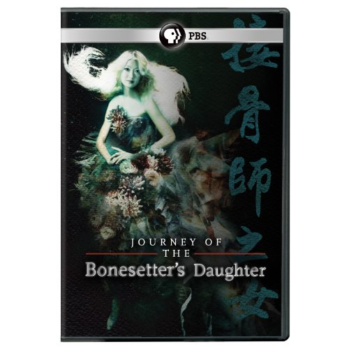Journey of the Bonesetters Daughter