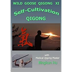 Wild Goose-XI: Self-Cultivation Qigong