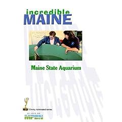 iM-108 Maine State Aquarium