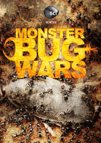 Monster Bug Wars