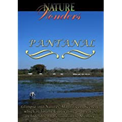 Nature Wonders  PANTANAL