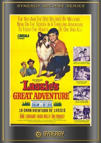 Lassie's Great Adventure (1964)