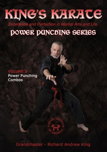 Power Punching Series - Volume 3: Power Punching Combos