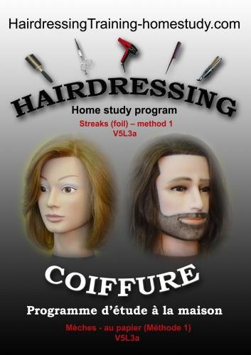 V5L3a - Streaks (foil) -method 1 -hairdressing training course