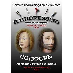 V5L3c - Streaks (foil) -method 3 -hairdressing training course
