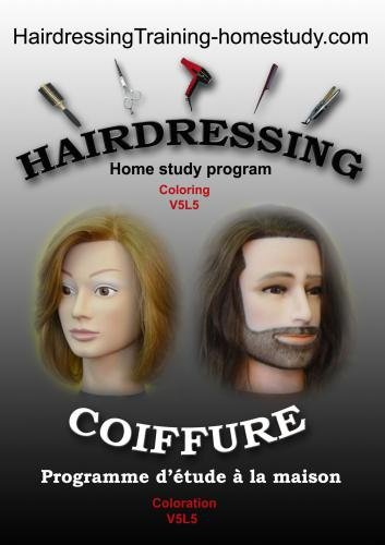 V5L5 -All you need to know coloring hair