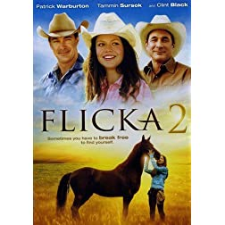 Flicka 2